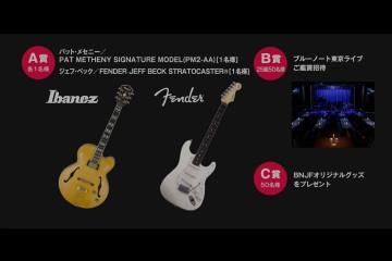 cp01_guitar