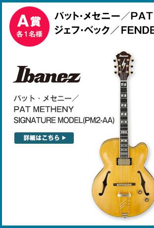 パット・メセニー/PAT METHENY SIGNATURE MODEL(PM2-AA)[1名様]